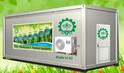 Гидропонное оборудование для выращивания готового корма. Кызылорда