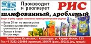 Крупа рисовая оптом Кызылорда!Рис от производителя. Урожай 2017!